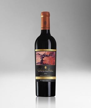 Picture of [Chateau de Potiron] Cuvee Exceptionnelle 2011, 750ML